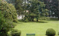 Verde Pubblico: interventi settimanali di manutenzione aree verdi