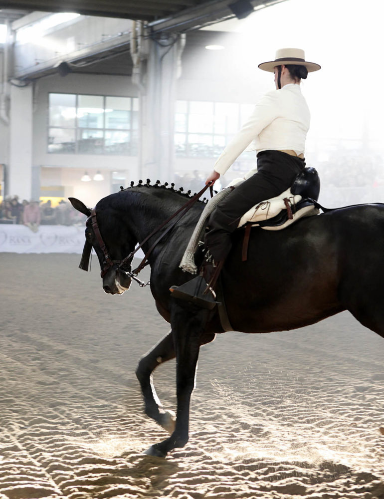 Fieracavalli 2015: premiato il binomio sport e turismo in sella oltre 160mila visitatori, in aumento quelli esteri
