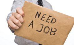 """""""Sevuoipuoi!""""... Trovare lavoro"""