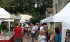 Nuova sede per il Verona Green Festival, dove regna la sostenibilità