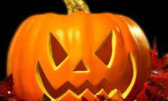 Coldiretti, triplicata la vendita di zucche per halloween