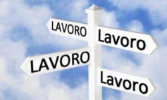 Lavoro: in Veneto 7 tirocini su 10 si trasformano in contratti di lavoro - Regione vara linee guida
