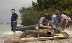 Oscar 2018: quattro nomination per il film di Guadagnino, 13 per Guillermo del Toro