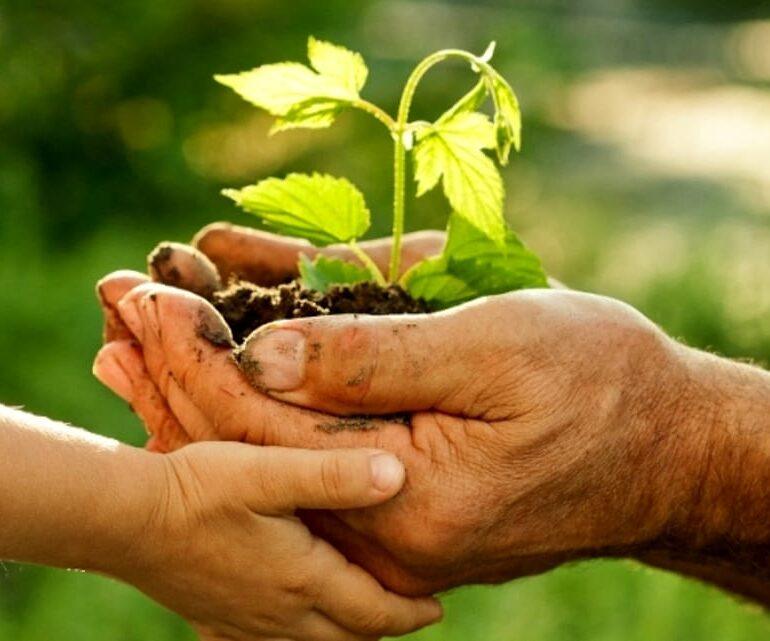 Presentazione del Centro Sollievo: un aiuto alle famiglie con casi di demenza senile