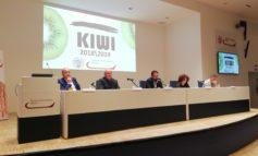 Annata 2018-2019, luci e ombre sul kiwi