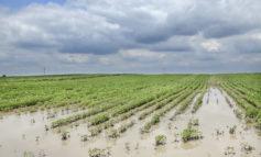 Maltempo: Regione Veneto chiede 27,5 mln di euro per danni da avversità atmosferiche di maggio