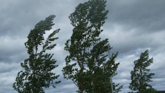Meteo. In Veneto stato di attenzione per vento forte