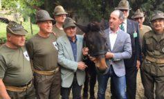 40 anni di Iroso, l'ultimo mulo 'alpino'