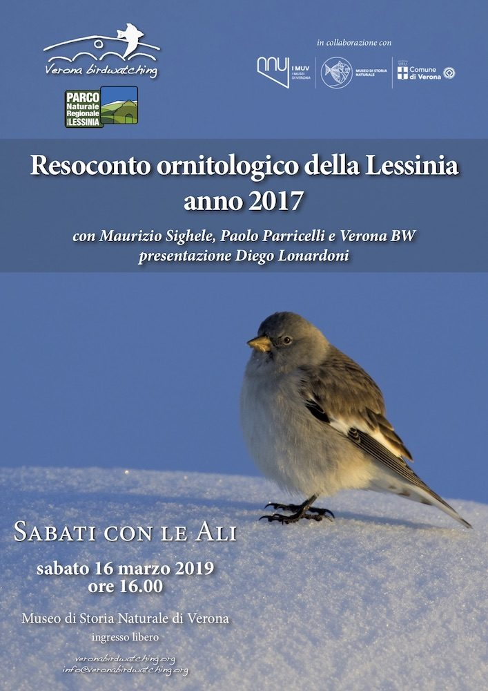 Resoconto ornitologico della Lessinia: anno 2017