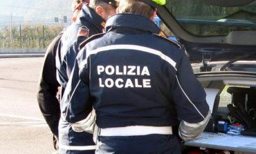 Ricerca testimoni. Nella notte auto abbatte panchine e segnali in un parco al Saval. La Polizia locale cerca l'automobilista