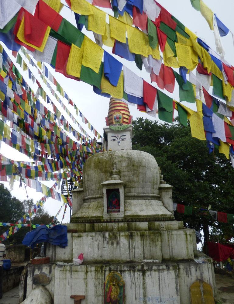 Missione di Medici per la Pace nelle alte valli dell'Himalaya