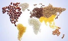 Giornata internazionale dell'alimentazione