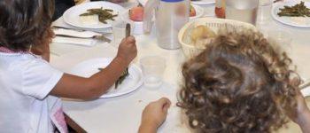 Insetti nel piatto in mensa a scuola, scatta il controllo del Nas