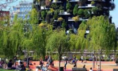 Verde. Oltre 20mila alberi in arrivo a Milano, obiettivo 100mila nella città metropolitana. Dal 20 al 25 Novembre piantumazioni in ogni quartiere