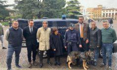 Operativa la nuova unità cinofila della Polizia Locale. Per la prima volta Verona si dota di un cane antidroga