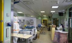 Aggiornamento Coronavirus: in Veneto 280 casi in più da ieri sera. Quasi 8.000 casi totali