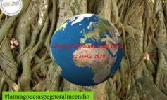 Coordinamento nazionale diritti umani. Domani Giornata mondiale della Terra 2020