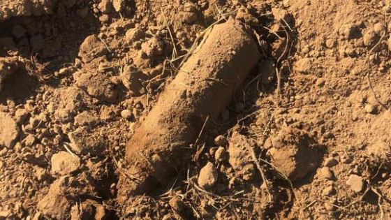 Vicenza. Parco della Pace, fatta brillare ieri mattina sul posto la bomba a frammentazione scoperta due settimane fa