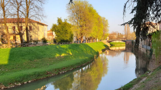 Vicenza. Verde cittadino, prosegue il programma di interventi di sfalcio e diserbo