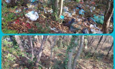 """Comune e plasticfree contro l'abbandono di rifiuti. Ass. Segala """"Una squadra di volontari contro i vandalismi"""""""