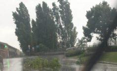 Verona, nubifragio 7 e 8 luglio. Ancora una settimana per richiedere il risarcimento danni