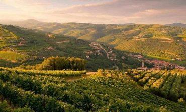Le colline di Negrar iscritte al Registro Nazionale dei Paesaggi Rurali Storici