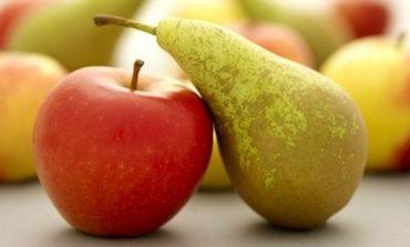 Coldiretti Verona, il clima condiziona l'annata frutticola. Calo di mele (-50%) e pere (-90%) veronesi