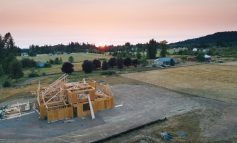 """Transizione ecologica, Verona presenta il """"Manifesto per il legno"""": risorsa per una crescita sostenibile"""
